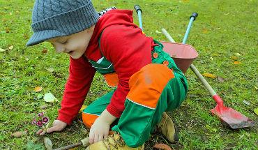 Makkelijk tuinieren met je eigen moestuin