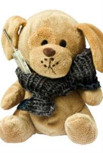 teddy_intekst