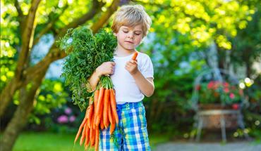 Tuinieren met je kleinkinderen – 7 tips voor een vruchtbare moestuin