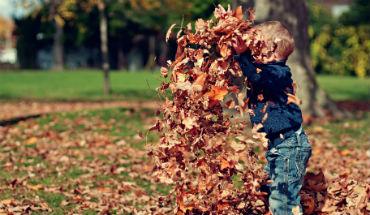 Herfst – 5 leuke dingen om met kinderen buiten te doen
