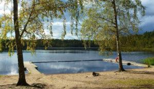 emigratie zwemmeer Zweden
