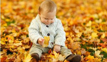 Peuter herfstblad uitgelicht