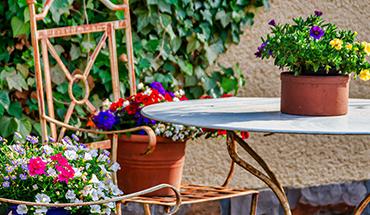 Wat zijn de favorieten in jouw tuin?